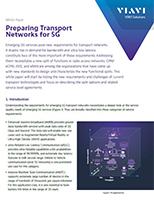 Preparing Transport Networks for 5G